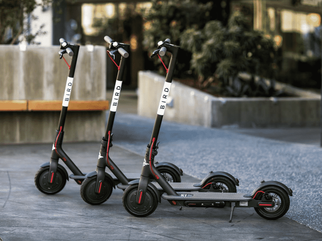 Bird Scooters Britain