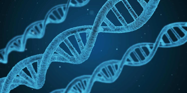 The Infamous CRISPR Baby Scientist